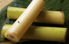Fresh Banana Stem 1 Piece
