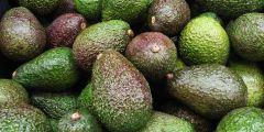 Fresh Avocado - 1piece