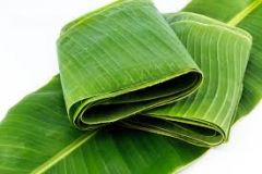 Banana Leaves (5 in a pack) (pre-order only) for puja