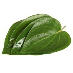 betel leaves 8-10