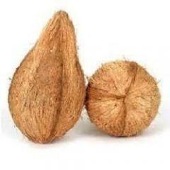 Fresh Coconut for Pooja