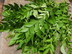 Fresh Curry Leaves 50g