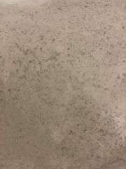 Navarathri Special - Kuttu Flour (Buckwheat Flour) - 500gm